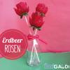 Erdbeer Rosen