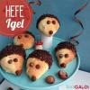 Hefe-Igel
