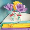 KreppPapier-Blumen