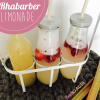Rhabarber Limonade / Sirup